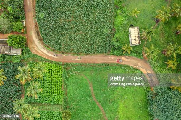 the rural drive - karnataka stock pictures, royalty-free photos & images