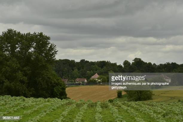The rural landscape under dark clouds and rain