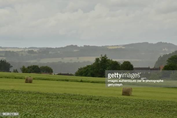 The rural landscape under rain and dark gray clouds