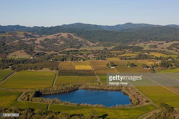 The Russian River Valley grape growing region is viewed from the air looking west toward Westside Road on October 14 2011 near Healdsburg California...
