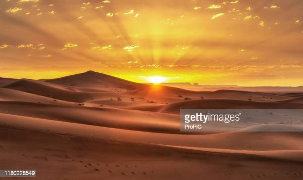 the sahara desert is the world's largest hot desert. tuareg with camels walk thru the sahara desert in morocco. - marruecos fotografías e imágenes de stock