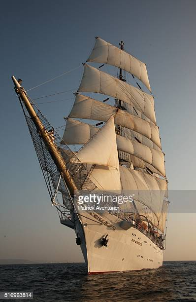 The sailing vessel Dar Miodziedzy from Poland arrives at the Escales A Sete festival on March 22 2016 in Sete France Thousands of visitors and over...