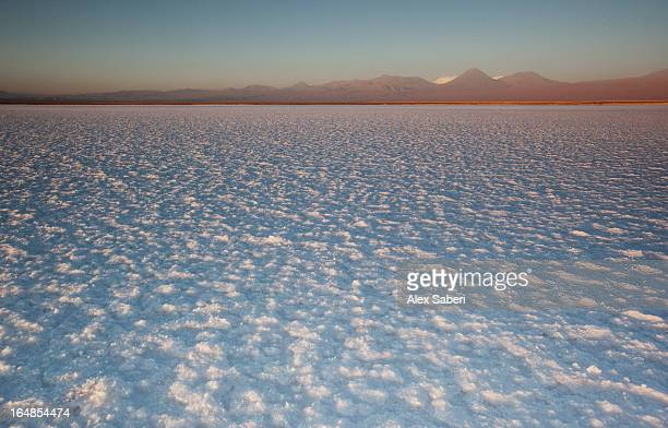 the salar de atacama in the atacama desert, chile. - alex saberi imagens e fotografias de stock