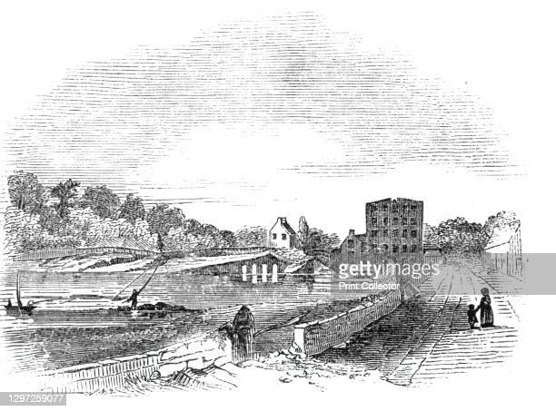The Salmon-Leap, near Coleraine, Ireland, 1844. 'On a fine day in summer, the Bann salmon may be seen in thousands disporting themselves in mid air,...