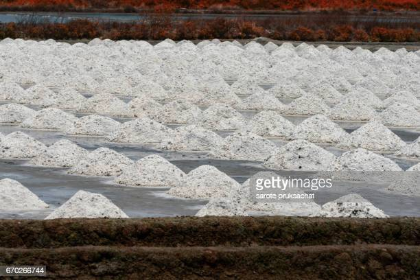 The salt crystallizes out of the ground in salt farm , filled with natural salt from the sea. This is one step in the production of sea salt.