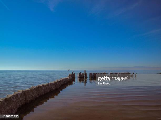 The Salton Sea once a former resort area in California's Imperial Valley is the largest lake in state The lake's increasing salinity rate and lack of...