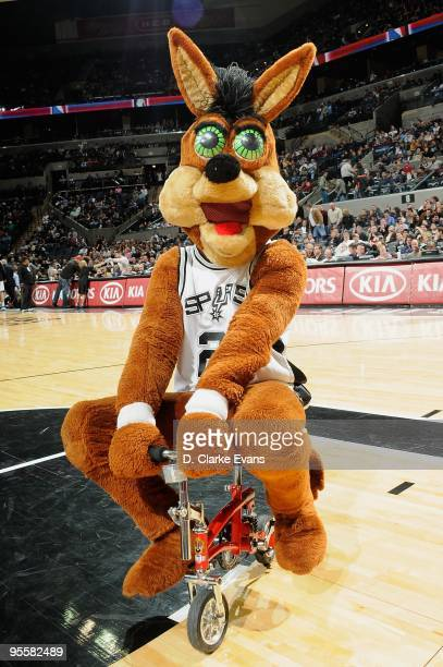 The San Antonio Spurs mascot 'The Coyote' entertains the crowd during the game against the Charlotte Bobcats on December 11 2009 at the ATT Center in...