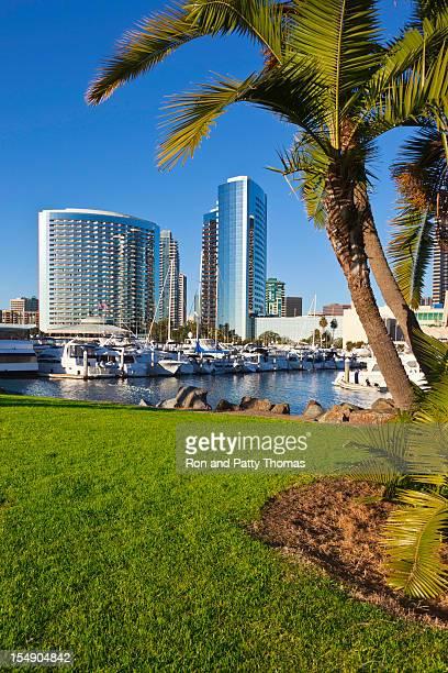 The San Diego Skyline in California