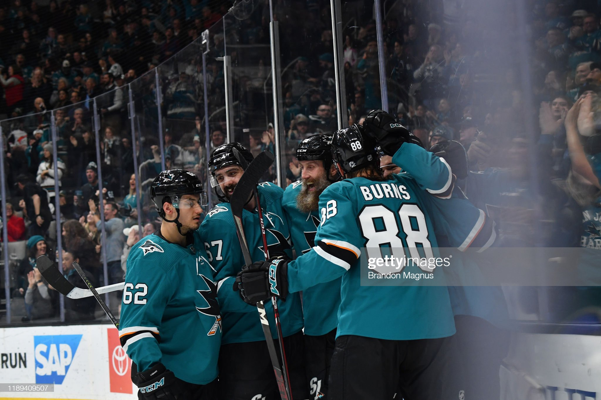 the-san-jose-sharks-celebrate-after-scor