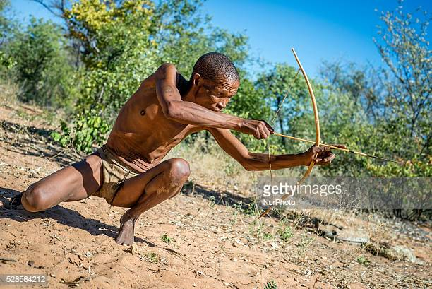The San peoples traditional hunting with bows and spears A hunter has to sneak up on the animal so it doesnt feel his smell Living Museum of the...