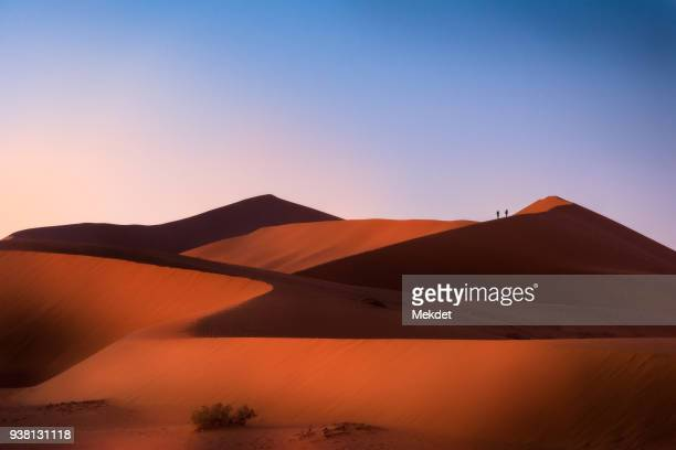 The Sand Dunes of Namib Desert, Namib-Naukluft National Park, Namibia
