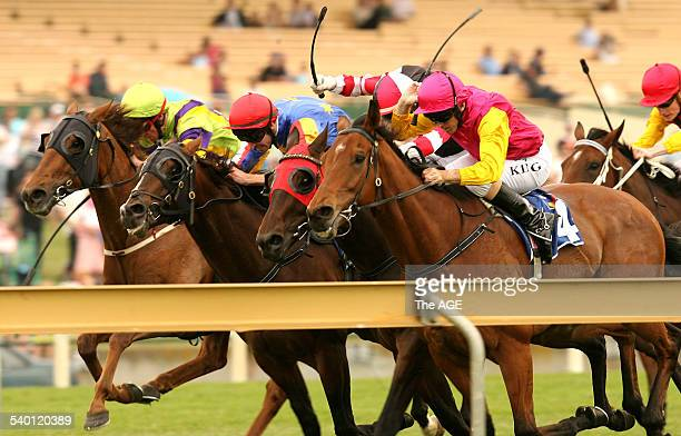 The Sandown Classic won by Gallant Guru ridden by Steven Arnold red cap Casual Pass yellow cap Roman Arch red black and white cap and Show Barry pink...