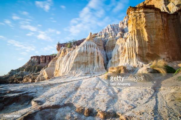 the sandstone cliff in black rock beach, melbourne, australia. - erosionado fotografías e imágenes de stock