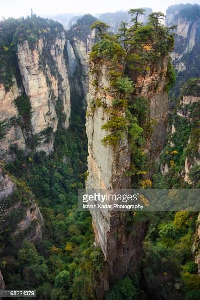 the sandstone peaks of yuanjiajie, hunan, china - pandora peaks stock photos and pictures