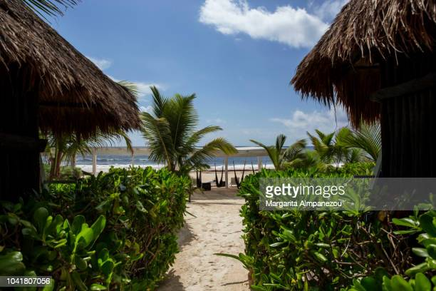 the sandy way to the tropical beach - margarita beach stock photos and pictures