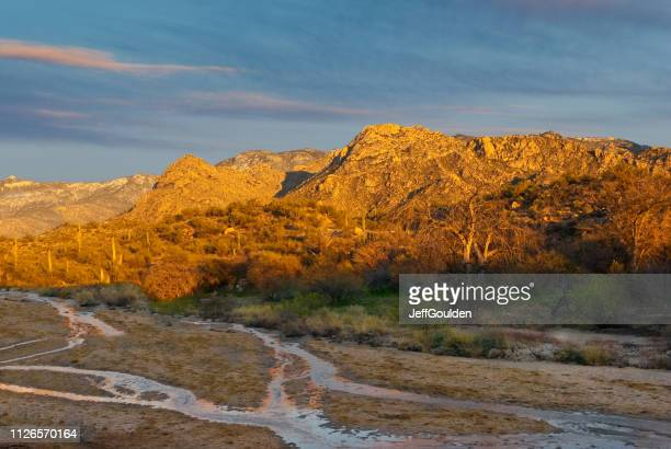 the santa catalina mountains at sunset - state park stock pictures, royalty-free photos & images