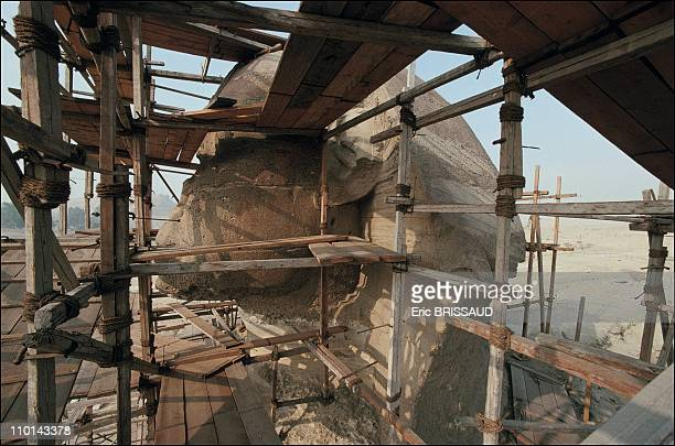 The scaffolding allows restorers and others scientists easy access to all parts of the monument to observe deterioration and analyse causes in Cairo...