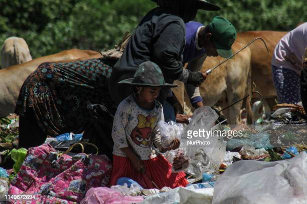 The scavenger was seen sifting through garbage for recycled materials at a garbage dump in Lhokseumawe Aceh Indonesia on June 13 2019