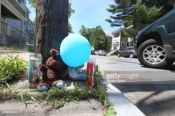 The scene where an 8yearold girl was killed by a hitandrun driver the night before on Sunday June 7 2015 A memorial to Yadielys Deleon Camacho is...