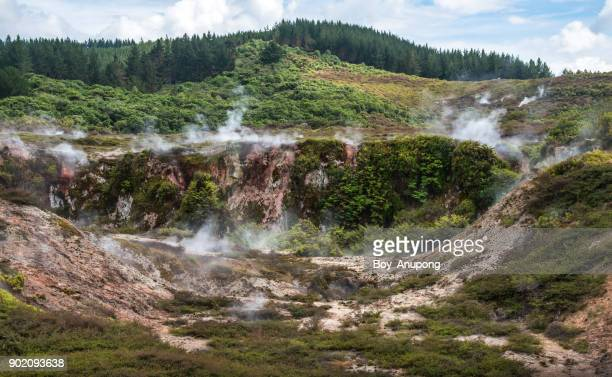 The scenery view of Craters of the moon the geothermal landscape in Taupo, New Zealand.
