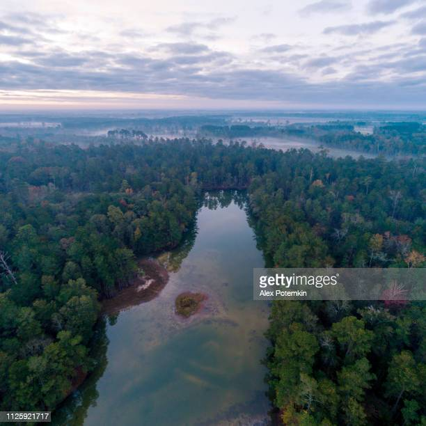 The scenic aerial view of the foggy swamps, forest and river in South Carolina at early morning