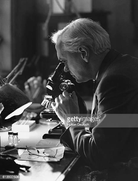 The Scottish bacteriologist Sir Alexander Fleming at work using a microscope He discovered penicillin in 1928 for which he shared the 1945 Nobel...