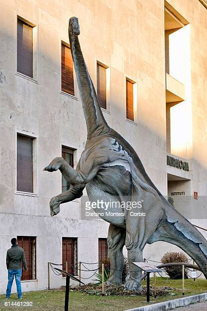 The sculpture of Diplodocus longus is displayed as part of 'Dinosaurs in Flesh and Bones' an exhibition of dinosaurs and other prehistoric animals...