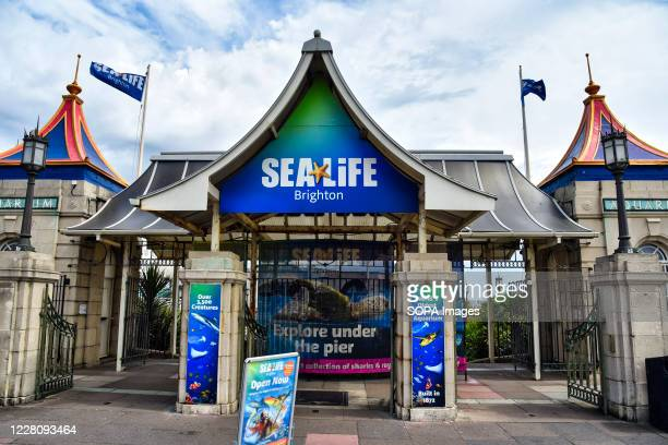 The Sea Life centre at Brighton in East Sussex. Sea Life Center is a commercial chain of sea life themed aquarium.