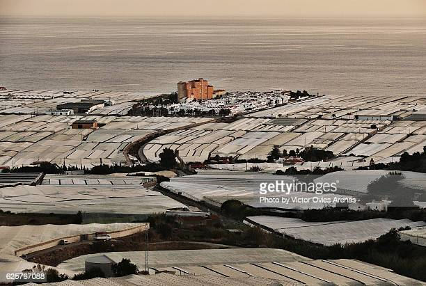 the sea of plastic, greenhouses in calahonda, province of granada - victor ovies fotografías e imágenes de stock