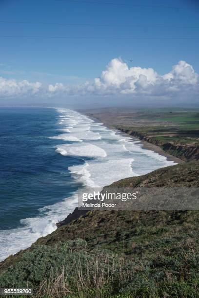 the seashore at point reyes national park - sonoma county stock pictures, royalty-free photos & images