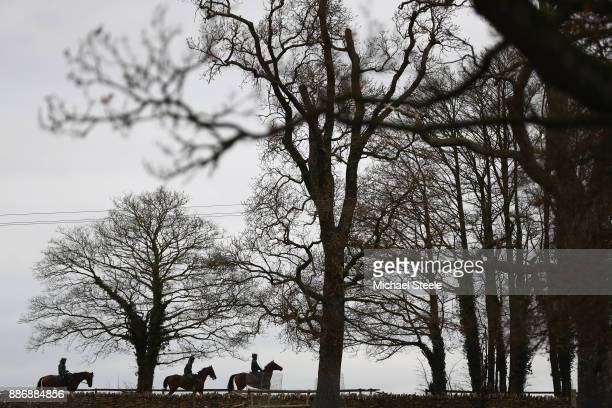 The second lot head back to the stables after working out on the polytrack gallop during a stable visit to the yard of national hunt trainer Nigel...