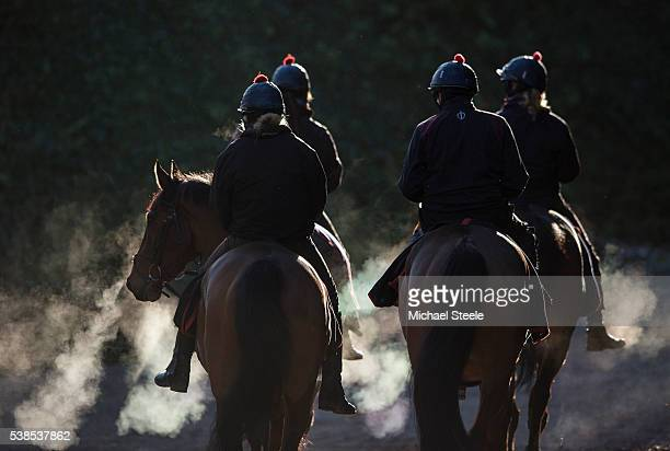 The second lot head back to the stables at Sandhill Racing Stables on January 16 2016 in Minehead England Sandhill Racing Stables set in 500 hundred...