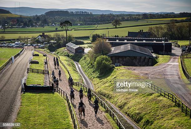 The second lot head back to the yard at Sandhill Racing Stables on April 28 2016 in Minehead England Sandhill Racing Stables set in 500 hundred acres...