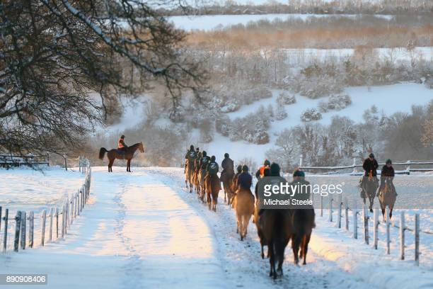 The second lot head down the polytrack gallop morning gallops in heavy snow at the yard of national hunt trainer Nigel TwistonDavies on December 12...