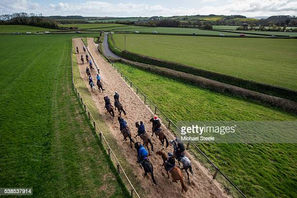 The second lot head towards the woodchip turn at Sandhill Racing Stables on April 26 2016 in Minehead England Sandhill Racing Stables set in 500...