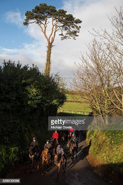 The second lot return to the yard at Sandhill Racing Stables on January 8 2016 in Minehead England Sandhill Racing Stables set in 500 hundred acres...