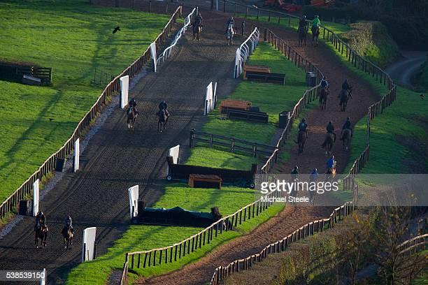 The second lot workout on the polytrack at Sandhill Racing Stables on December 8 2015 in Minehead England Sandhill Racing Stables set in 500 hundred...
