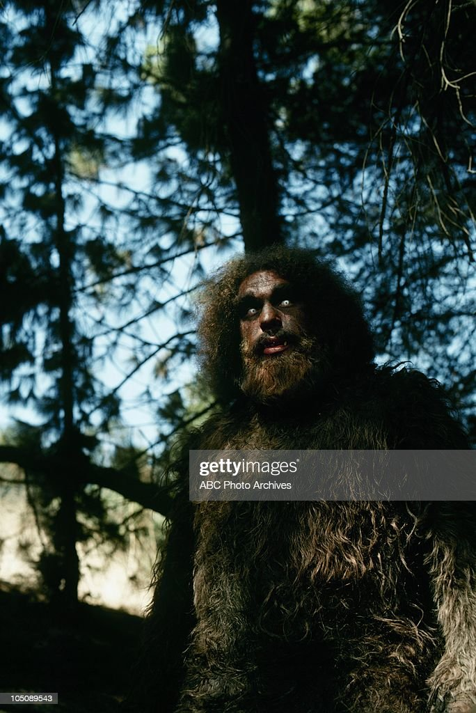 MAN - 'The Secret of Bigfoot' - Airdate February 4, 1975. (Photo by ABC Photo Archives/ABC via Getty Images) ANDRE