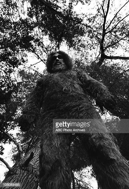 MAN The Secret of Bigfoot Airdate February 4 1976 ANDRE
