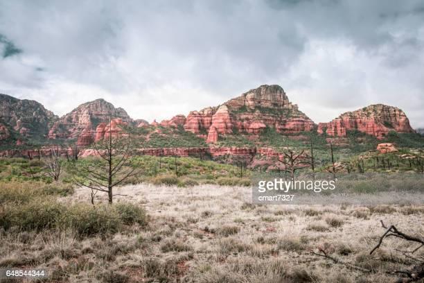 The Sedona Desert