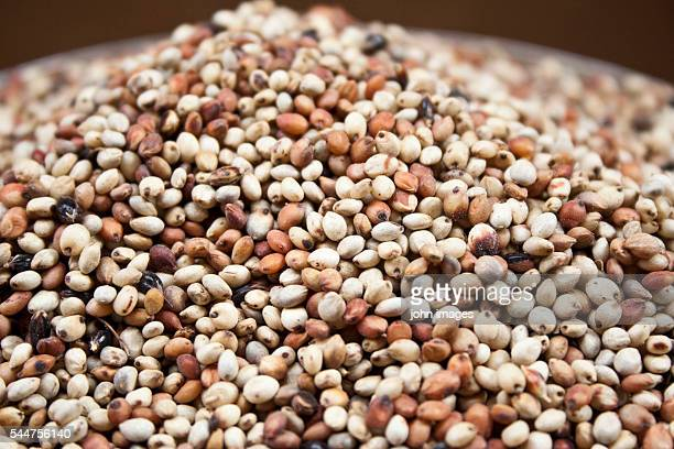 The seed of millet