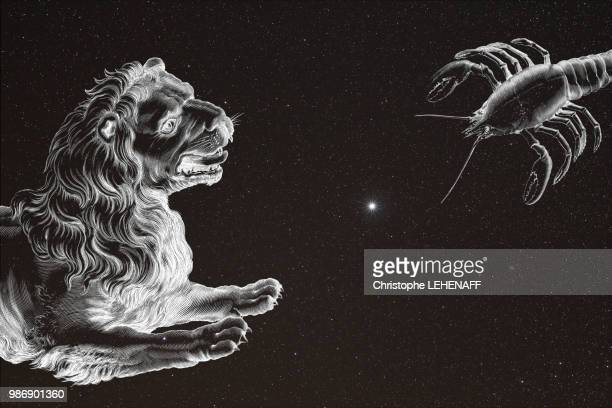 The Seine and Marne. Close-up on the constellations of the Lion and Cancer. In the center the Jupiter planet gleams. The Lion and Cancer seem to want to fight for Jupiter.