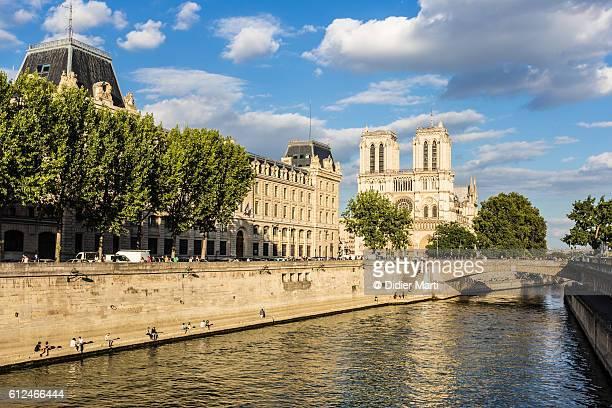 the seine riverbanks adn notre dame de paris - fluss seine stock-fotos und bilder