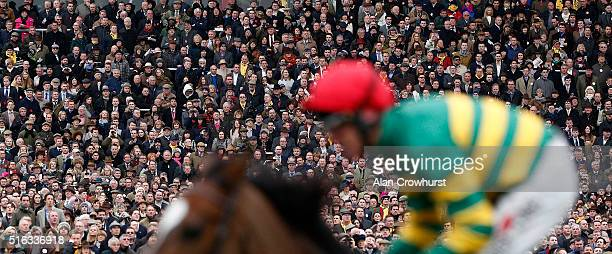 The sell out crowd watches the racing during the Gold Cup Day of Cheltenham Festival at Cheltenham racecourse on March 18 2016 in Cheltenham England