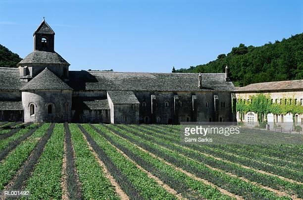 The Senanque Abbaye