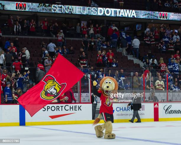 The Senators mascot Spartacat waves the team flag on the ice after the Senators 63 win over the Leafs in the NHL game between the Ottawa Senators and...