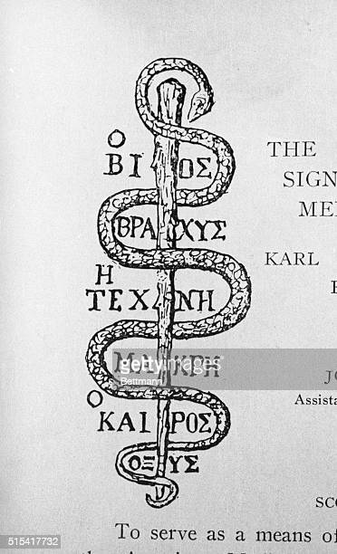 The serpent of Aesculapius with inscriptions 'Life is short art is long experience difficult'