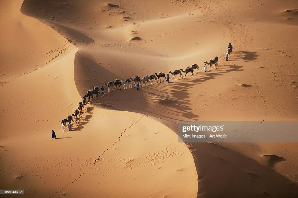 The setting sun over the desert, and a caravan of camel merchants leading their animals across the dunes. : Stock Photo