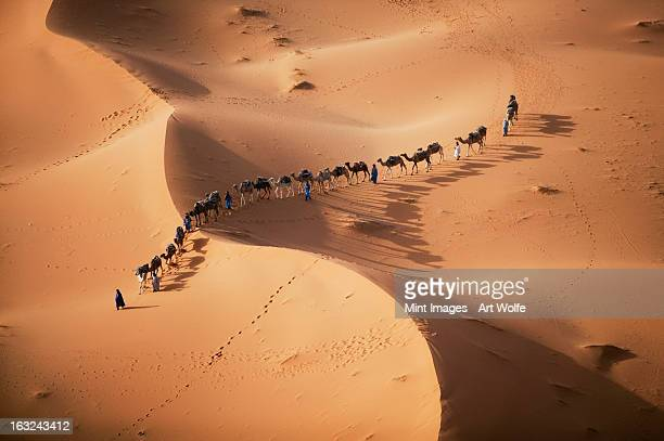 the setting sun over the desert, and a caravan of camel merchants leading their animals across the dunes. - camel train stock pictures, royalty-free photos & images