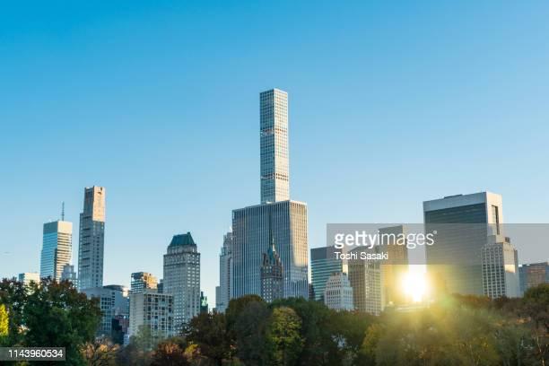 the setting sun reflects among the midtown manhattan skyscraper behind the trees in sheep meadow central park at new york ny usa on nov. 08 2018. - novembro azul - fotografias e filmes do acervo
